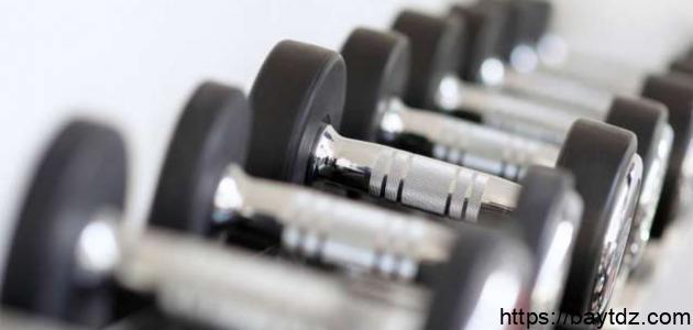 عناصر اللياقة البدنية الأساسية