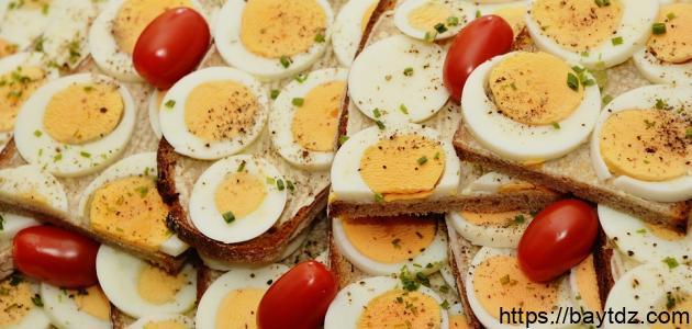 فوائد أكل البيض المسلوق