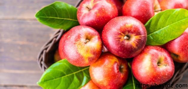فوائد التفاح للقولون