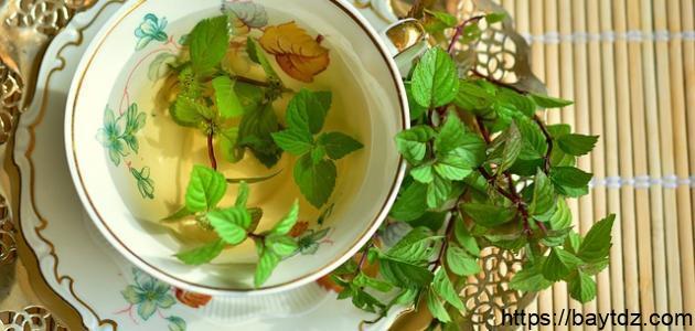 فوائد الشاي الأخضر بعد الأكل الدسم
