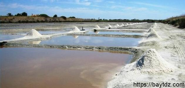 فوائد الملح البحري