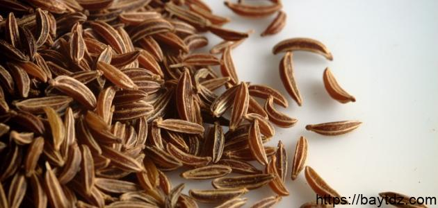 فوائد بذرة الشبت والشمر
