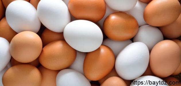 فوائد تناول البيض