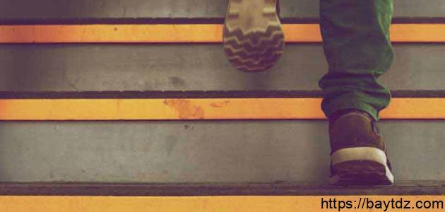 فوائد صعود ونزول الدرج