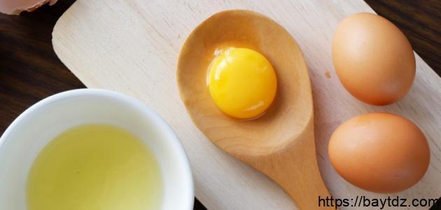 فوائد صفار البيض للبشرة الجافة