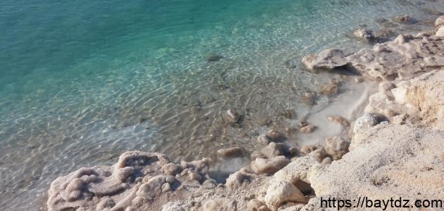 فوائد ماء البحر الميت