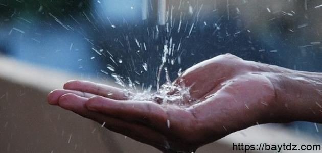 فوائد ماء المطر