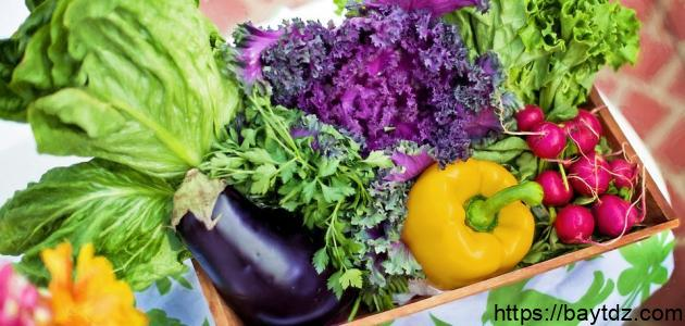 فواكه وخضروات فصل الربيع