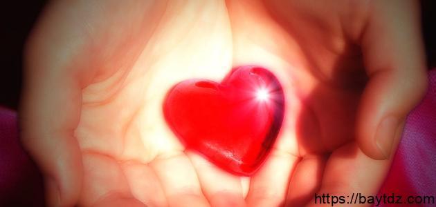 كلمات ذات معنى عميق في الحب