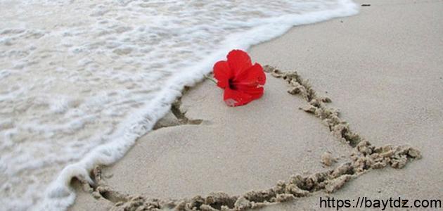 كلمات عن البحر والحب