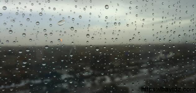 كلمات عن المطر