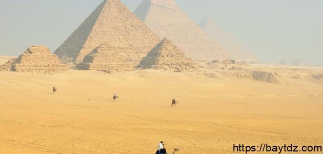 كلمات في مصر