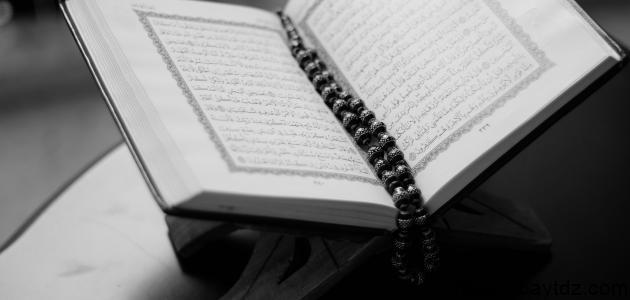 كم عدد سور القرآن المدنية