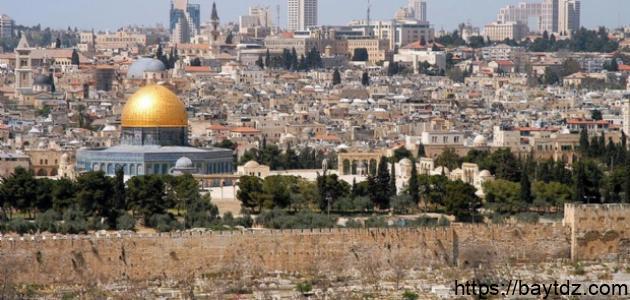 كم عدد مدن فلسطين