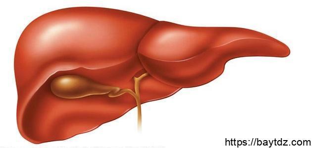 كيف أتخلص من سموم الكبد