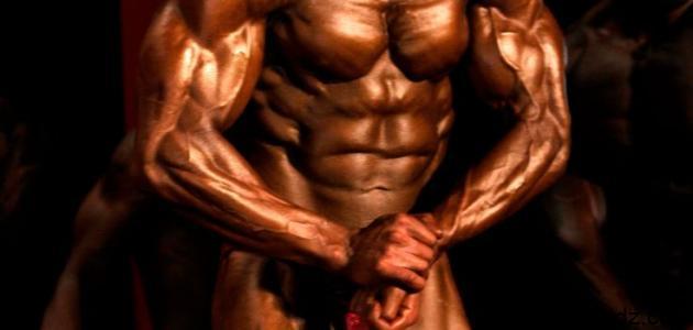 كيف أكبر عضلات جسمي