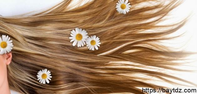 كيف تجعل شعرك يطول بسرعة