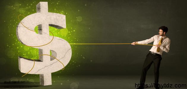 كيف تحقق الثروة