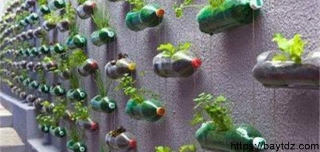 كيف تستفيد من الزجاجات البلاستيكية الفارغة