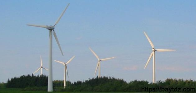 كيف تعمل طاقة الرياح
