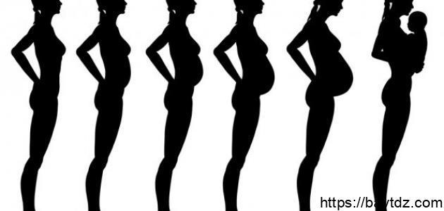 كيف يكون شكل البطن في بداية الحمل