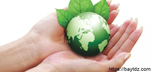 كيف يمكن المحافظة على البيئة