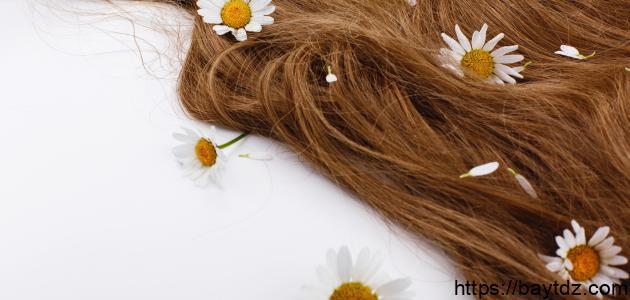 كيفية تشقير الشعر طبيعياً