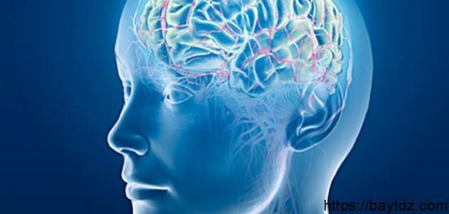 كيفية تنمية الذكاء للكبار