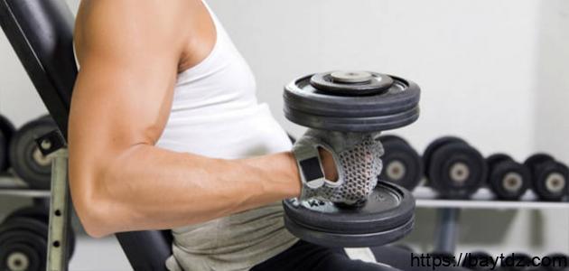 كيفية زيادة حجم العضلات