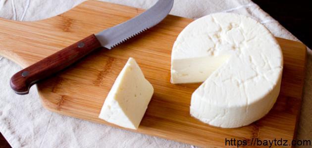 كيفية صناعة الجبن في المنزل