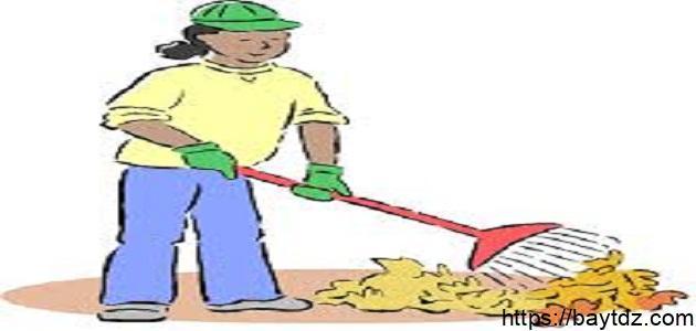 ما أهمية النظافة