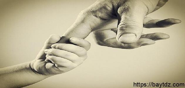 ما المقصود ببر الوالدين