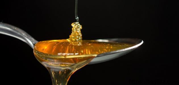ما فائدة عسل النحل على الريق