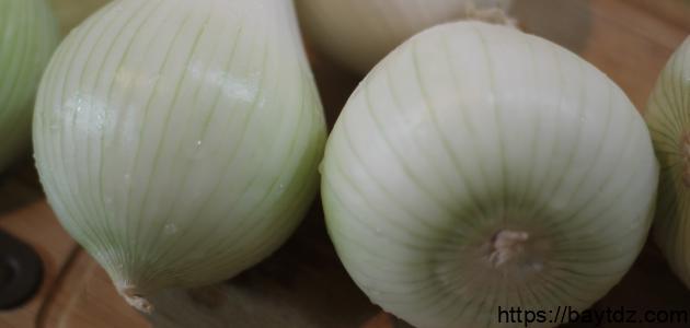ما فوائد البصل الأبيض