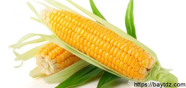 ما فوائد الذرة الصفراء