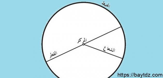 ما محيط الدائرة