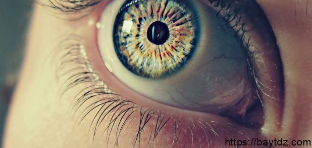 ما هو سبب جفاف العين