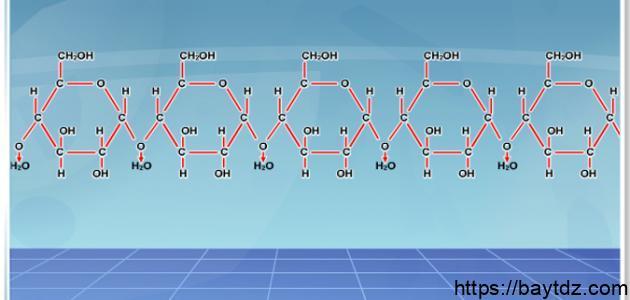 ما هي المركبات العضوية