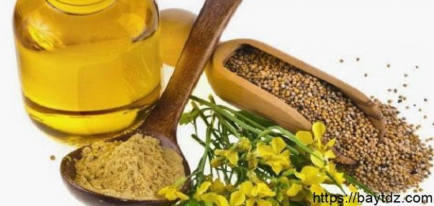 ما هي فوائد الحلبة وزيت الزيتون للشعر
