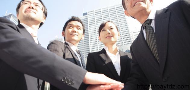 ما هي مهام المدير التنفيذي