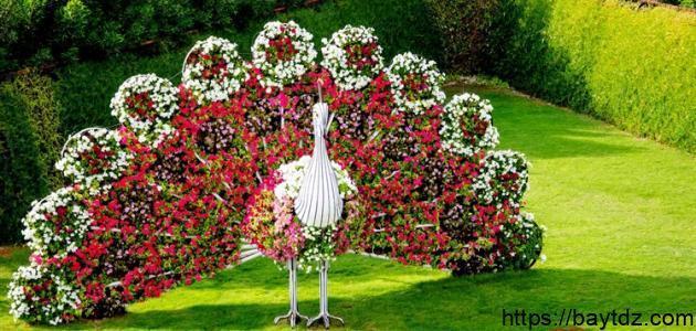 مدينة الزهور في الإمارات