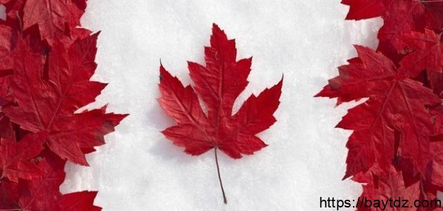 مدينة تقع في كندا