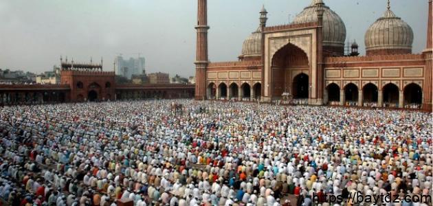 مدينة دلهي في الهند