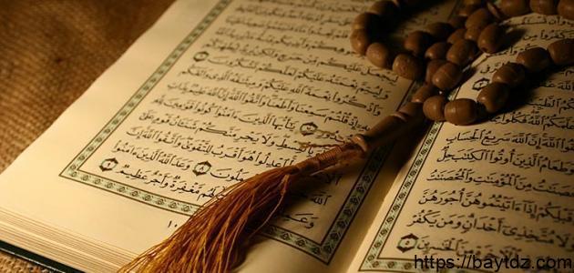 مراحل نمو الجنين في القرآن