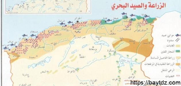 مساحة الجزائر وعدد سكانها
