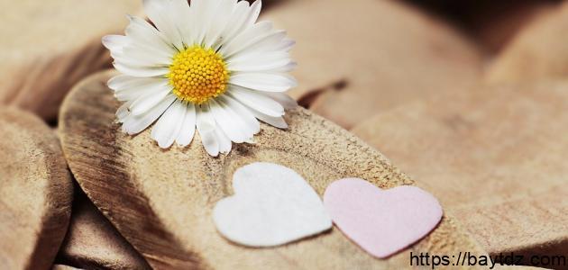 مسجات عن حب الزوج