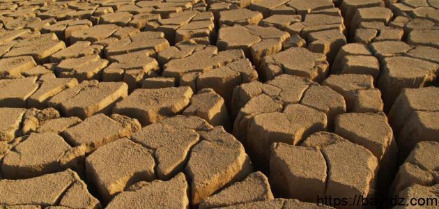 مشكلة قلة الماء وظاهرة التصحر