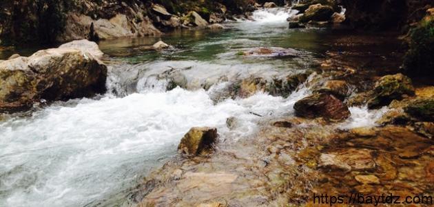 معايير قياس جودة الأوساط المائية