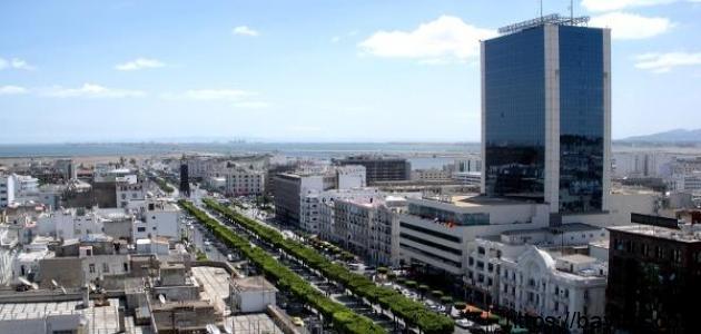 معلومات عن مدينة تونس