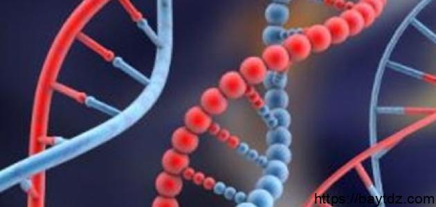 مفهوم الأمراض الوراثية